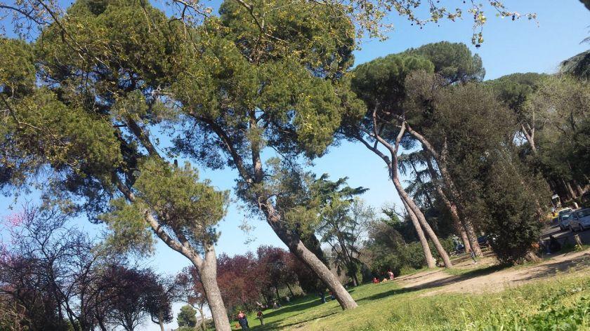 villa borgheses